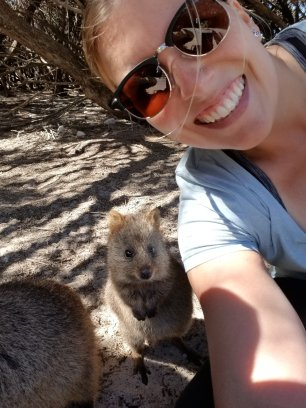 You can never have too many quokka pics