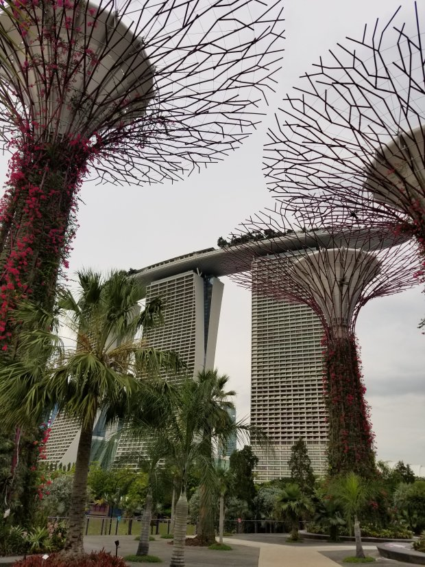 Marina Bay Sands and Gardens by the Bay