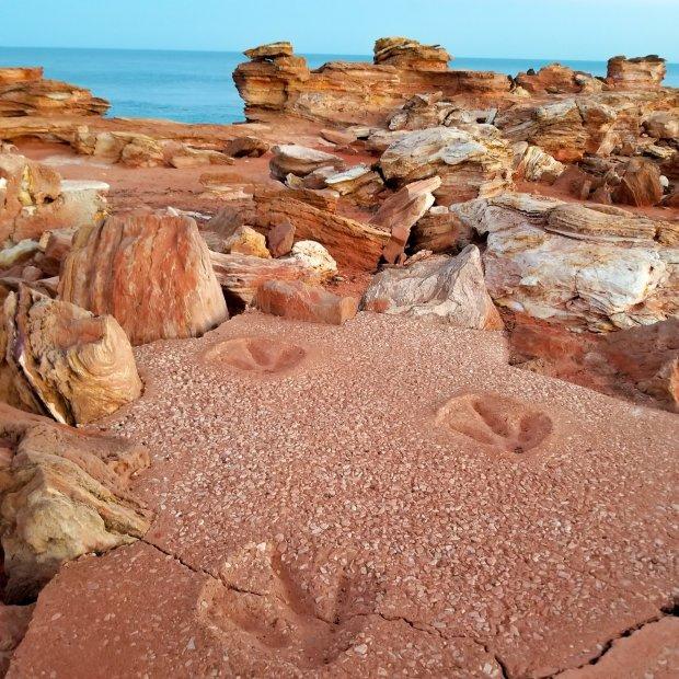 Broome dinosaur footprints