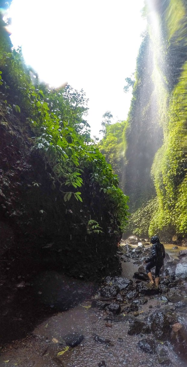 Hiking through Madakaripura Waterfall