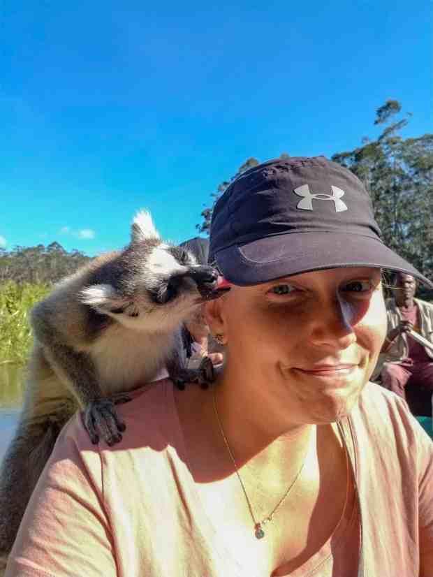 Ringtail Lemur Vakona Madagascar