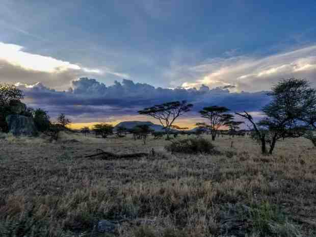 Sunset Serengeti National Park Tanzania