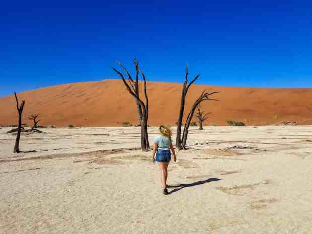 Walking among the petrified trees of Sossusvlei Namibia