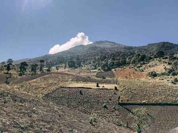 The ashy farmland terrain on the first portion of the Acatenango Volcano hike.