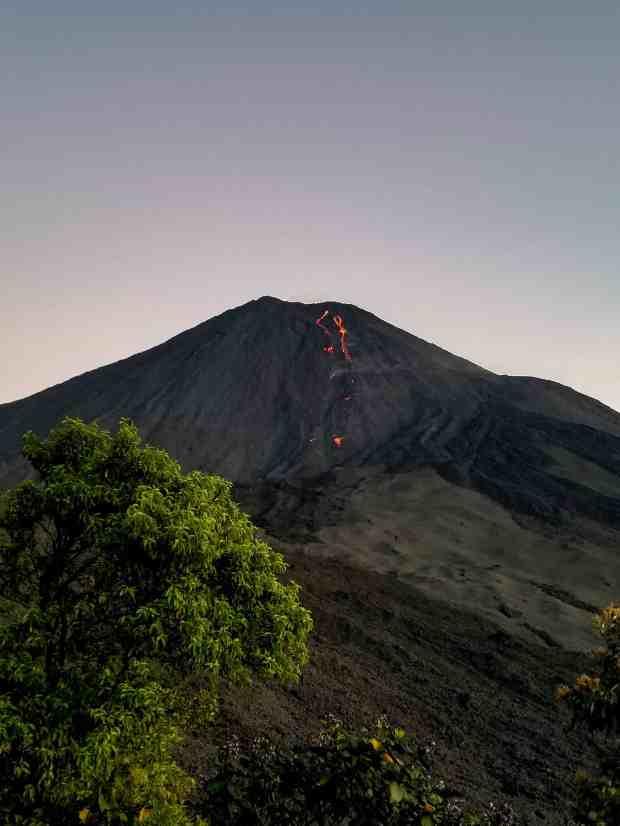 Pacaya Volcano's lava river