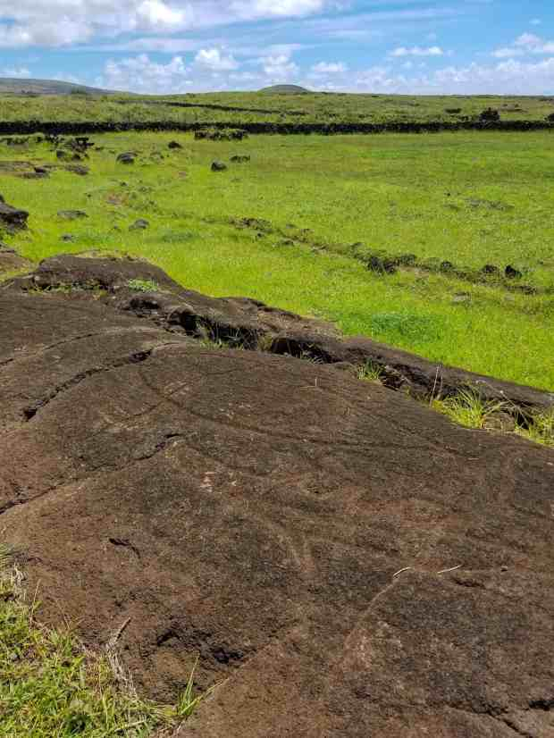 Tuna fish petroglyph at Papa Vaka Rapa Nui Easter Island Chile