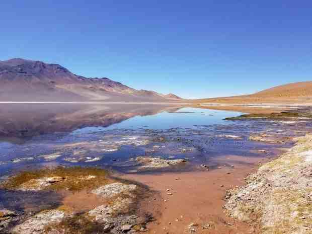 Aguas Calientes Salt Flat San Pedro de Atacama Chile