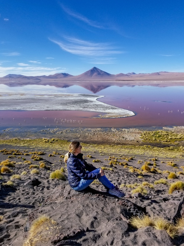 Taking in Laguna Colorada