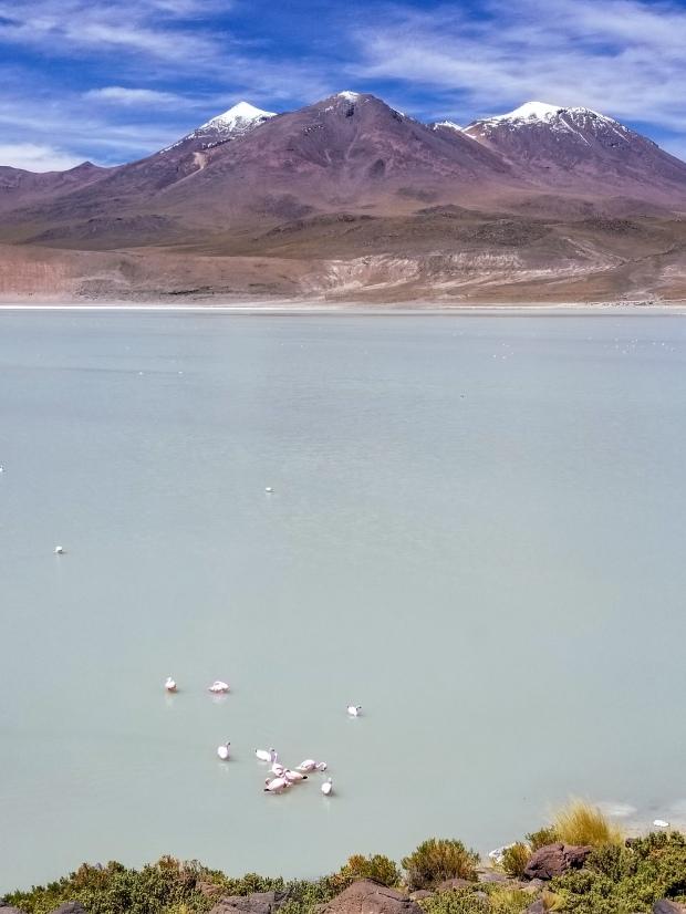Laguna Chiarcota, Bolivia