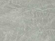 Geoglyph of a monkey